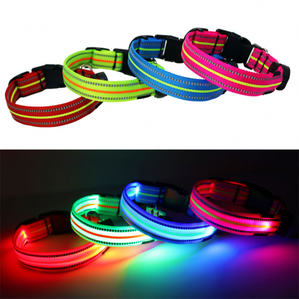 LED dog collars all colors