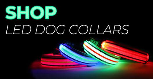 LED Dog Collar Category Image